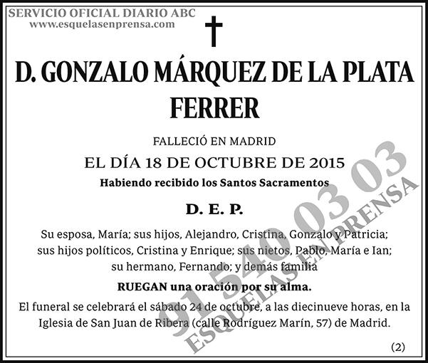 Gonzalo Márquez de la Plata Ferrer